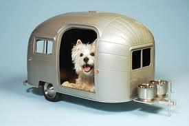 How cool is this kennel?