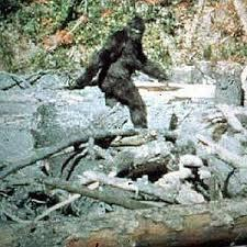 Do you believe in BIGFOOT?