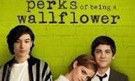 Has anyone seen Perks of Being a Wallflower?