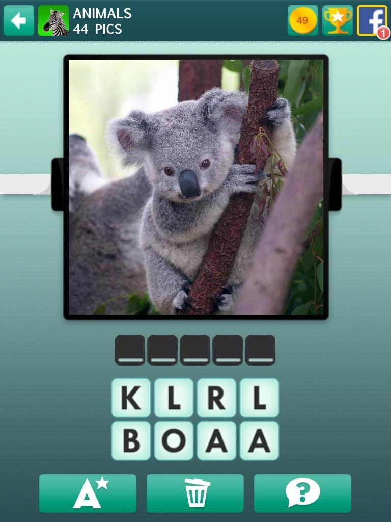 Don't you think this koala is adorable?