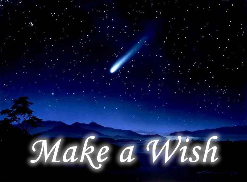 if you could have one wish what would it be?