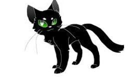 In the book where Hollyleaf died do you think she should stay alive or stay dead?