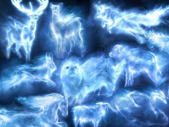 What patronus are you on pottermore?