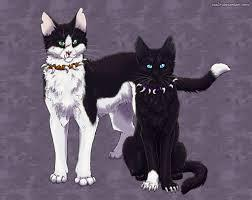 Who is your favorite evil warrior cat?