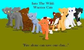 "What is the appropriate age for the ""Warrior"" series by Erin Hunter?"