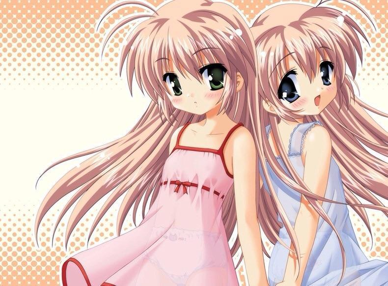 What anime are the twins in the picture from?