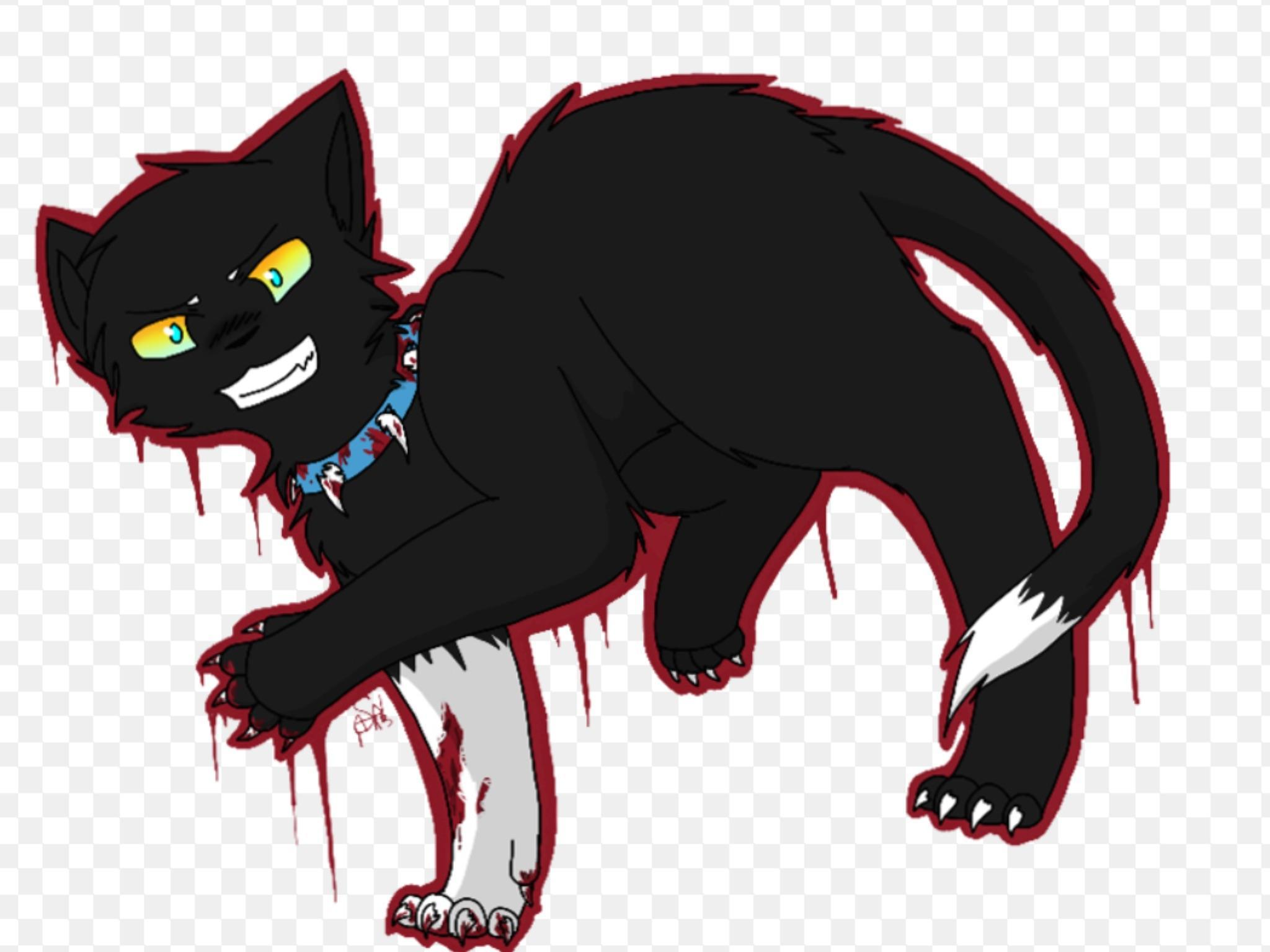 What do you think of Scourge the cat?