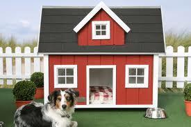 What about this kennel?