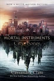 Have you read the Mortal Instruments series?