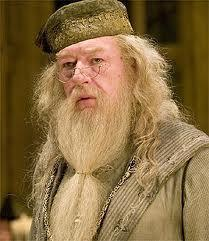 what do you think about dumbledore?!