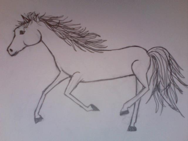do you like the picture I drew of a horse?