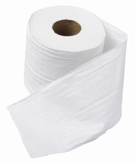 What did people use before toilet paper was invented?
