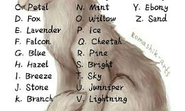 Warrior cat name ideas? (#1)