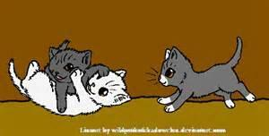 Why dont dewpaw amberpaw and snowpaw look like cloudtail? (warrior cats question)