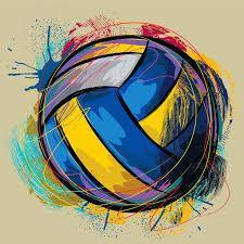 What do you think about volleyball?