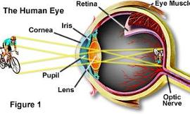 What is the resolution of the human eye in megapixels?