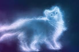 What is your patronus?