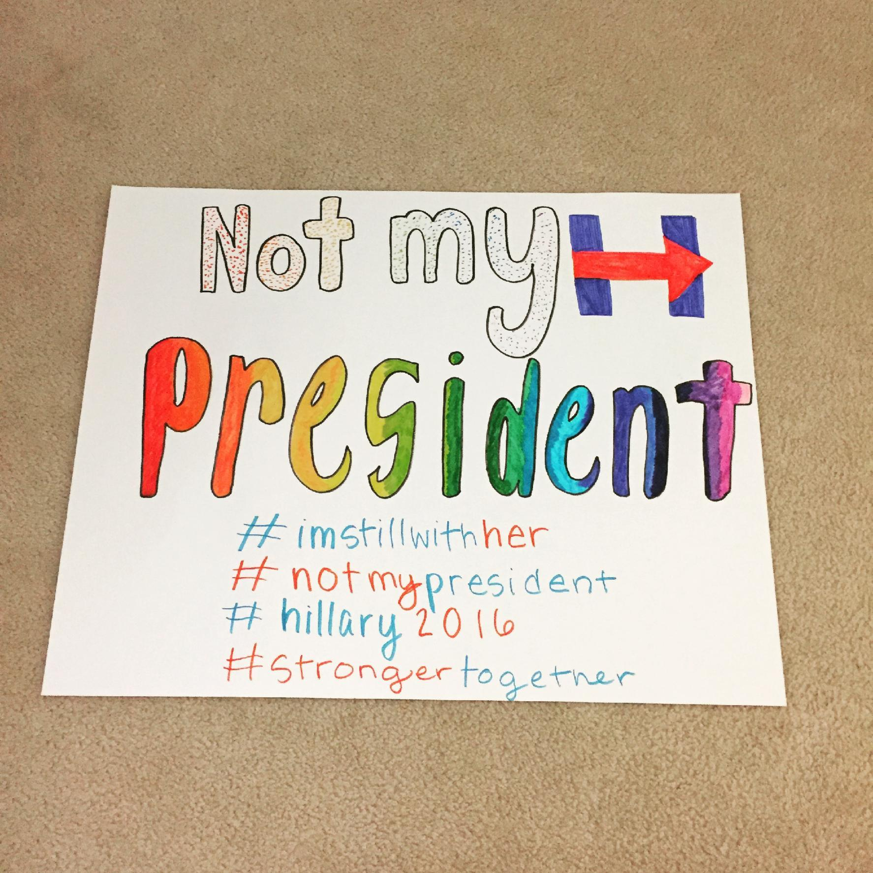 My protest sign #1